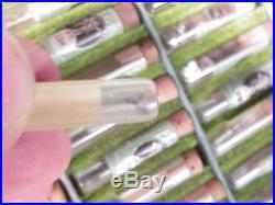 4 Drawer Cabinet Lot ELGIN 6861 Pocket Watch Parts HANDS, STAFFS, JEWELS, + NOS