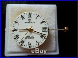 Genuine Swiss 25 Jewel, Eta 2824-2 Sandoz Enameled Dial, Hands, Stem, Crown